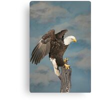 Sky Eagle Tribute - Collaberation Canvas Print