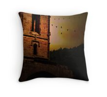 The History of Migration Throw Pillow