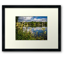 Roath Reflections Framed Print