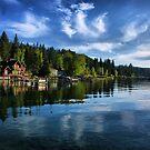 Morning At The Lake by Barbara  Brown