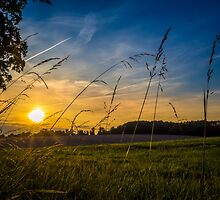 Summer Sunset by mlphoto