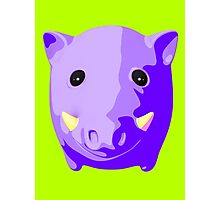 Wild pig Photographic Print
