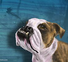 Painting of a Bulldog with Brown and White Coat by ibadishi