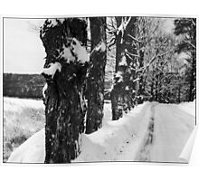 George Road Winter Monochrome Poster
