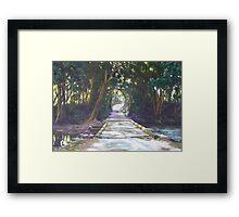 Sunlight & Shadow, Lansdowne River Framed Print