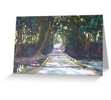Sunlight & Shadow, Lansdowne River Greeting Card