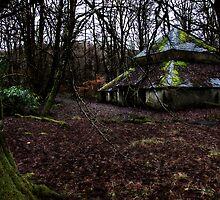 Wee House in the Woods by Leoni Bolt