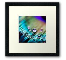 Precious Gems Framed Print