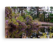 Wisteria Lake Canvas Print