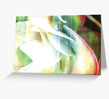 Flapjack Texture Greeting Card