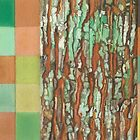 Silky Oak Bark (Detail Section 3b), On the Outer ~ Tree Trunk Extracts  by Kerryn Madsen-Pietsch