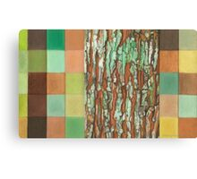 Silky Oak Bark (Detail Section 3b), On the Outer ~ Tree Trunk Extracts  Canvas Print