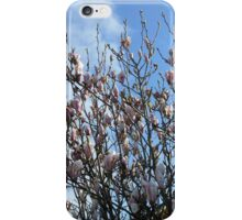 Reaching for the Sky - Pretty Spring Tree Blossoms iPhone Case/Skin