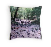 dry creek bed Throw Pillow