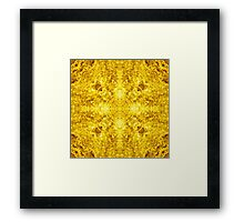 Golden Dream Framed Print