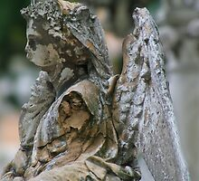Angel of Entropy by martinilogic