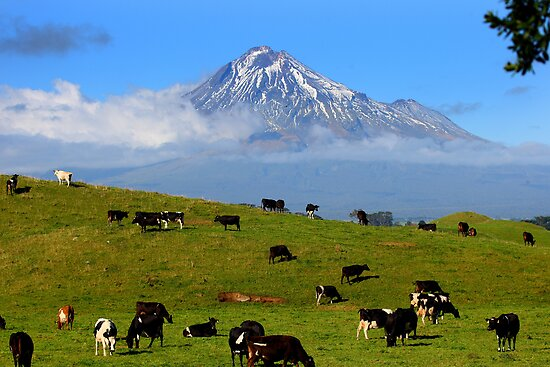 Mt Taranaki, New Zealand by steen