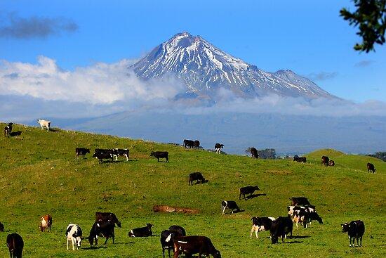 Mt Taranaki, New Zealand by steen