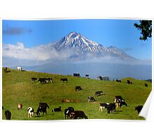 Mt Taranaki, New Zealand Poster