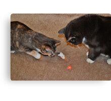 Feline Laser Tag Canvas Print