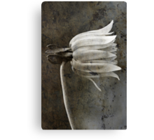 From little things, big things grow... chapter 2 Canvas Print
