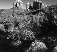 Cathedral Rock in B&W by BGSPhoto