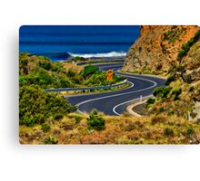 """S Bend"" Canvas Print"