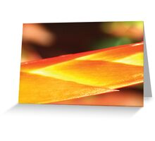 Sun Spear Greeting Card