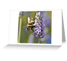 Bumblebee Dive Greeting Card