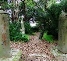 Graveyard Pathway by Paul Todd