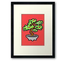 Sushi-Bonsai... Framed Print