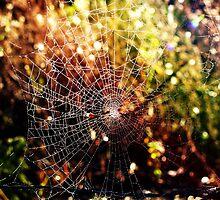 Rustic Web by kazzaT