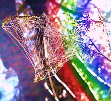 Rainbow Web by kazzaT