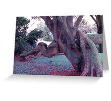 lichen monster Greeting Card