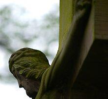 Saviour by Rowan  Lewgalon