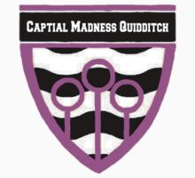 Capital Madness Quiddtich by laurenmoe