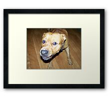 Your Making me MAD!!! Framed Print