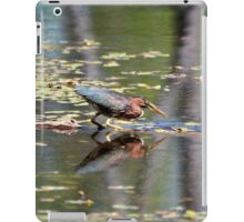 Green Heron Reflections iPad Case/Skin