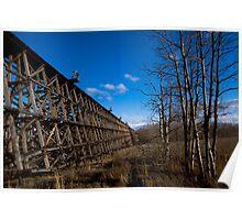 Rochfort Rail Bridge Poster