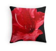 Dwarf Azalea Throw Pillow