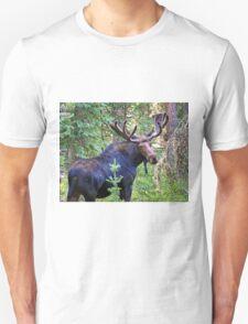 Bullwinkle T-Shirt