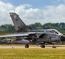 Thundering Tonka on Heat. by Colin Smedley