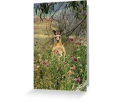 Peek a Boo! Greeting Card