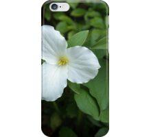 Trillium Grandiflorum iPhone Case/Skin