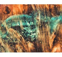 Riddick's world - watercolor painting Photographic Print