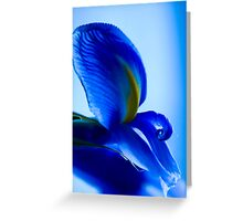 Oh so blue ! Greeting Card