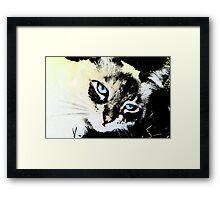 Ink Cat Framed Print