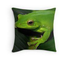 Polypedates dennysi (gliding chinese tree frog) Throw Pillow