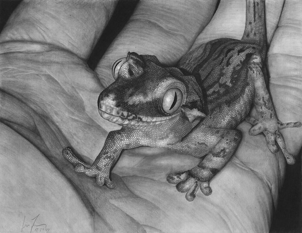 Gargoyle Gecko by JimmyJack