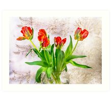 HDR French Red Tulips  Art Print